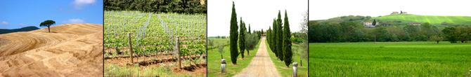 Business and Labor Tuscany Events in Tuscany, special offers in hotels, farmhouses, bed and breakfast